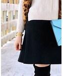 ANN TAYLOR   (Skirt )