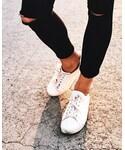 sézane   (Sneakers)
