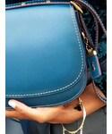 ZARA | (Handbag)