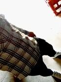 KEITさんの「adidas STAN SMITH CF (ランニングホワイト) (17SP)【SP】(adidas|アディダス)」を使ったコーディネート