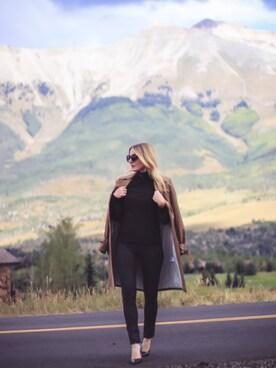 「Petite Women's Halogen Sheer Sleeve Turtleneck Sweater(no brand)」 using this Erin looks