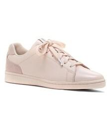no brand「Women's Ed Ellen Degeneres Chapalove Sneaker(Sneakers)」