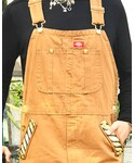 Dickies | (Overall)